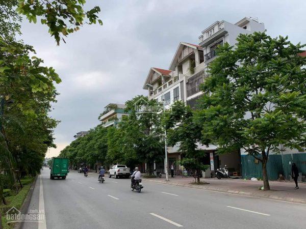 Dù vẫn nằm trên giấy nhưng bất động sản khu vực dự kiến có cầu Trần Hưng Đạo đi qua đã thiết lập mặt bằng giá mới